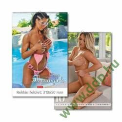 TOPTIMER Falinaptár Dream Girls T093-15 310x420mm
